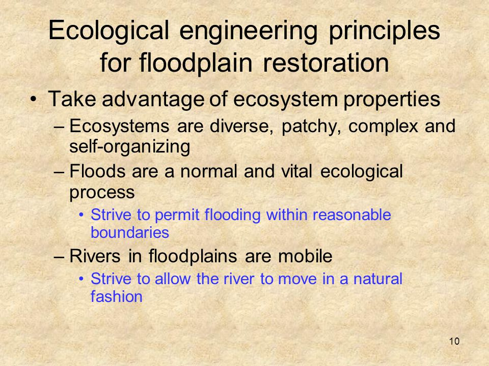 10 Ecological engineering principles for floodplain restoration Take advantage of ecosystem properties –Ecosystems are diverse, patchy, complex and self-organizing –Floods are a normal and vital ecological process Strive to permit flooding within reasonable boundaries –Rivers in floodplains are mobile Strive to allow the river to move in a natural fashion