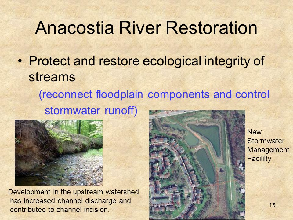15 Anacostia River Restoration Protect and restore ecological integrity of streams (reconnect floodplain components and control stormwater runoff) Development in the upstream watershed has increased channel discharge and contributed to channel incision.