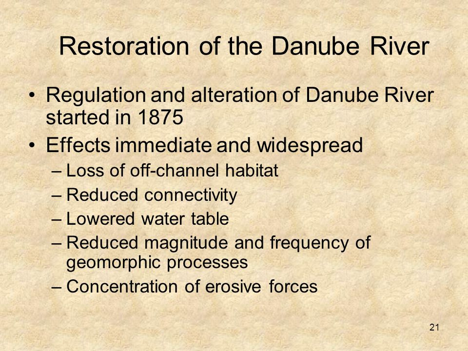 21 Regulation and alteration of Danube River started in 1875 Effects immediate and widespread –Loss of off-channel habitat –Reduced connectivity –Lowered water table –Reduced magnitude and frequency of geomorphic processes –Concentration of erosive forces Restoration of the Danube River