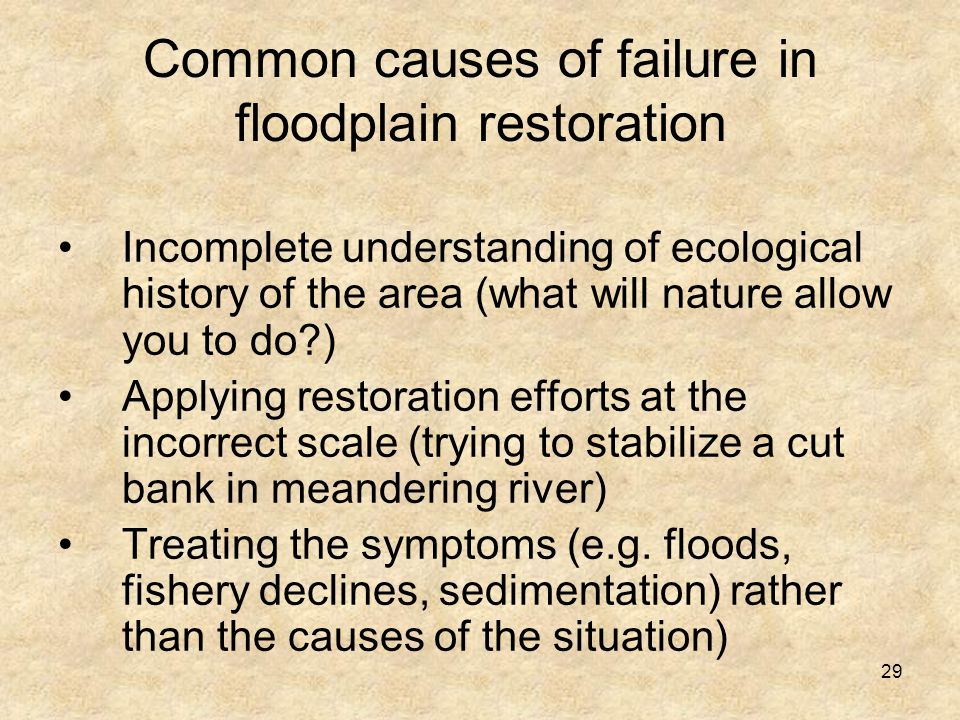 29 Common causes of failure in floodplain restoration Incomplete understanding of ecological history of the area (what will nature allow you to do ) Applying restoration efforts at the incorrect scale (trying to stabilize a cut bank in meandering river) Treating the symptoms (e.g.