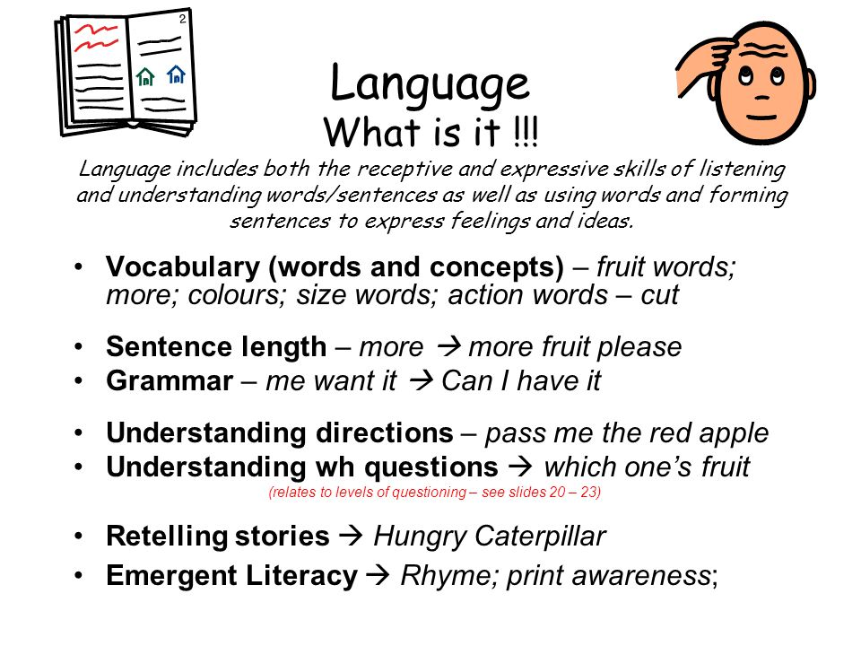 RED FLAGS Less than 50 words at 2 yrs (not just nouns but actions and descriptive words also) Simple sentences – age 3 yrs (e.g.