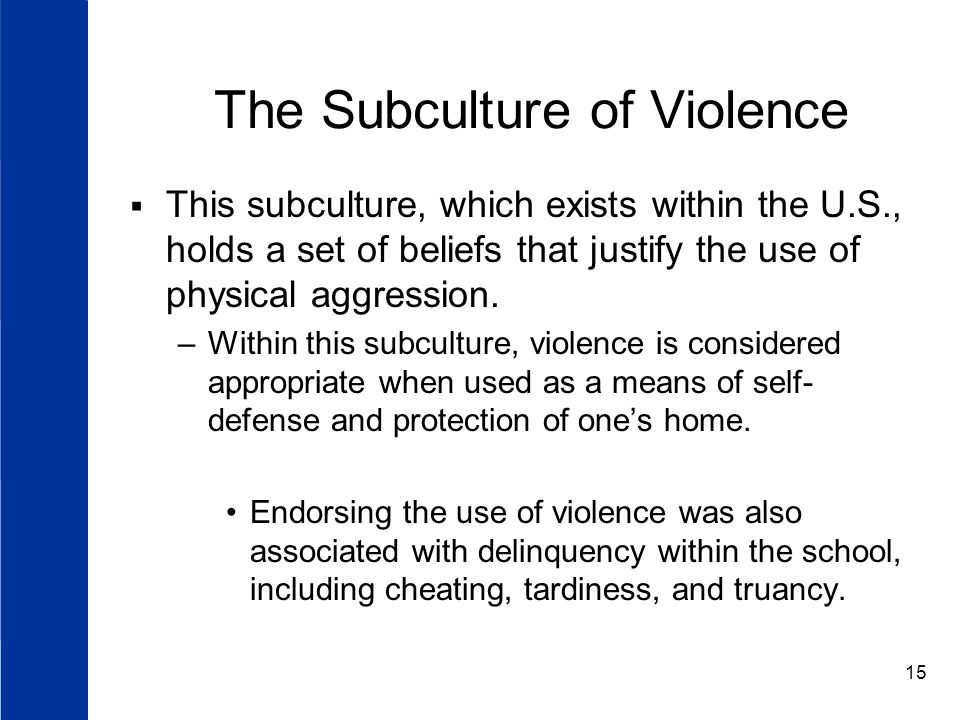 15 The Subculture of Violence  This subculture, which exists within the U.S., holds a set of beliefs that justify the use of physical aggression.
