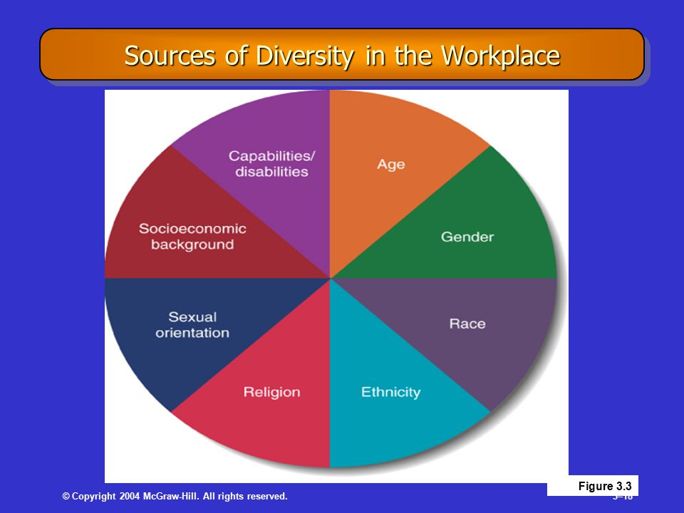 © Copyright 2004 McGraw-Hill. All rights reserved.3–18 Sources of Diversity in the Workplace Figure 3.3