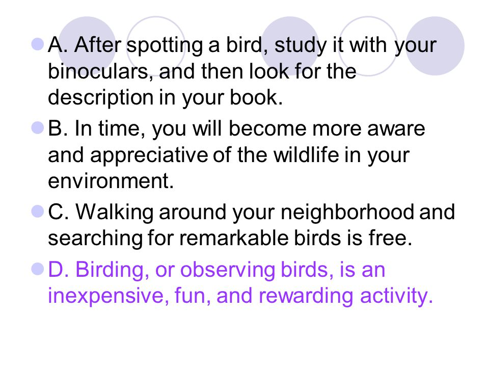 A. After spotting a bird, study it with your binoculars, and then look for the description in your book. B. In time, you will become more aware and ap