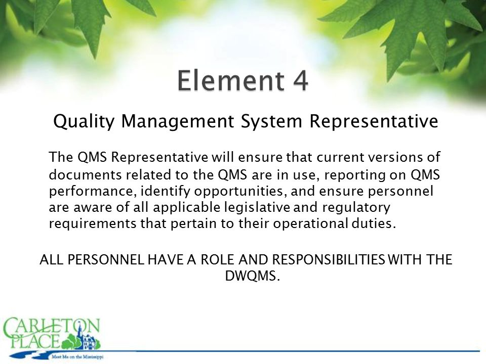 Quality Management System Representative The QMS Representative will ensure that current versions of documents related to the QMS are in use, reporting on QMS performance, identify opportunities, and ensure personnel are aware of all applicable legislative and regulatory requirements that pertain to their operational duties.