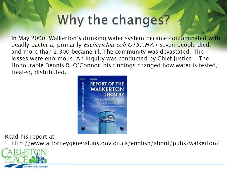 In May 2000, Walkerton's drinking water system became contaminated with deadly bacteria, primarily Escherichia coli O157:H7.1 Seven people died, and more than 2,300 became ill.