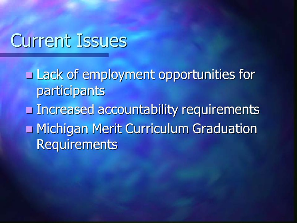 Current Issues Lack of employment opportunities for participants Lack of employment opportunities for participants Increased accountability requiremen