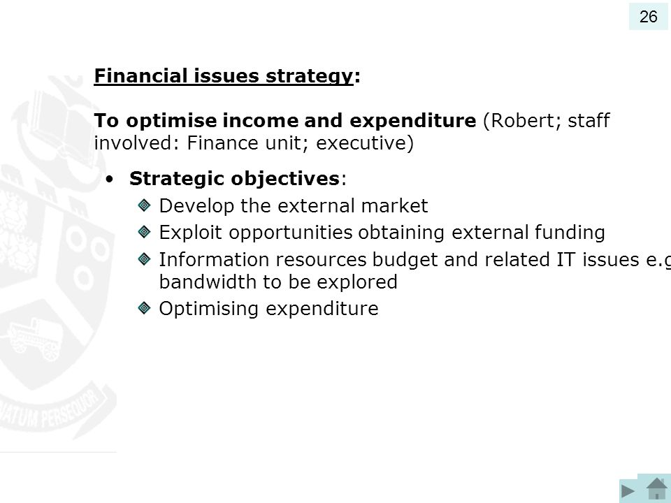 Financial issues strategy: To optimise income and expenditure (Robert; staff involved: Finance unit; executive) Strategic objectives: Develop the external market Exploit opportunities obtaining external funding Information resources budget and related IT issues e.g.
