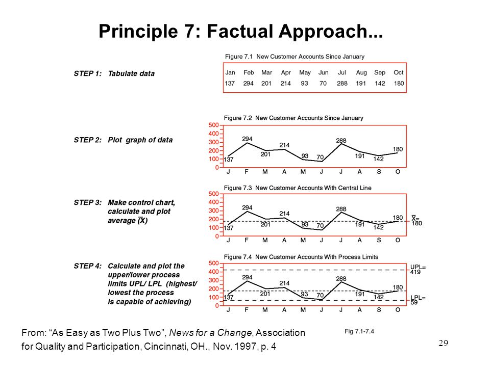 29 Principle 7: Factual Approach...