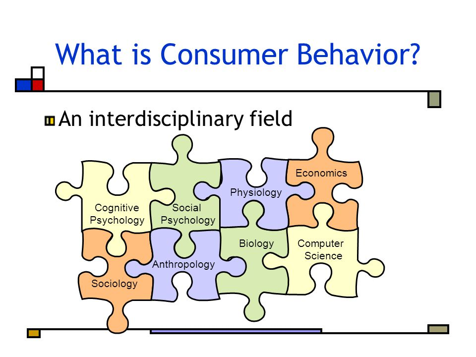 What is Consumer Behavior.