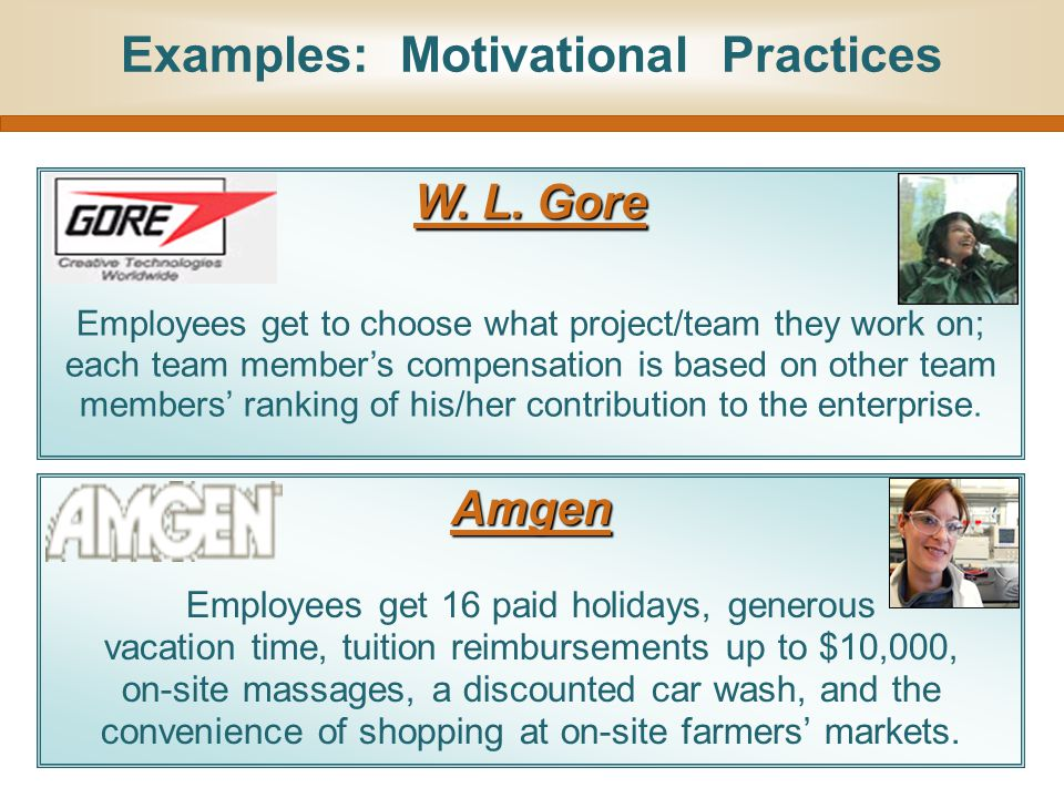 Examples: Motivational Practices W. L. Gore Employees get to choose what project/team they work on; each team member's compensation is based on other