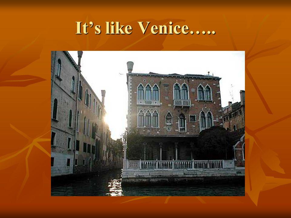 It's like Venice…..