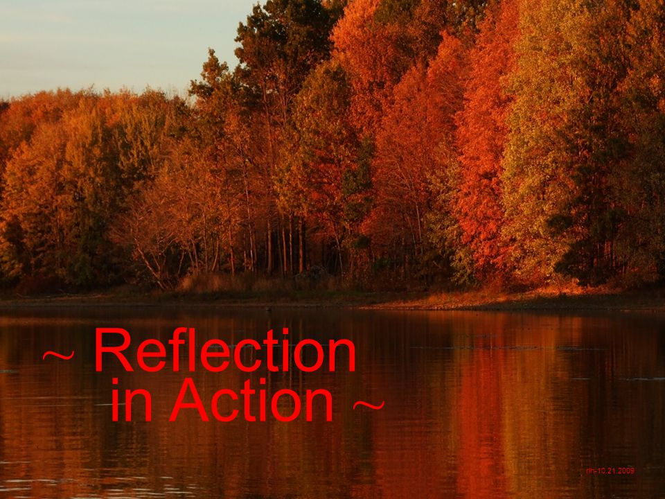 ~ Reflection in Action ~ rlh-10.21.2009