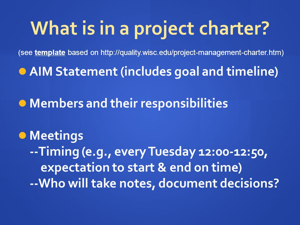 What is in a project charter.