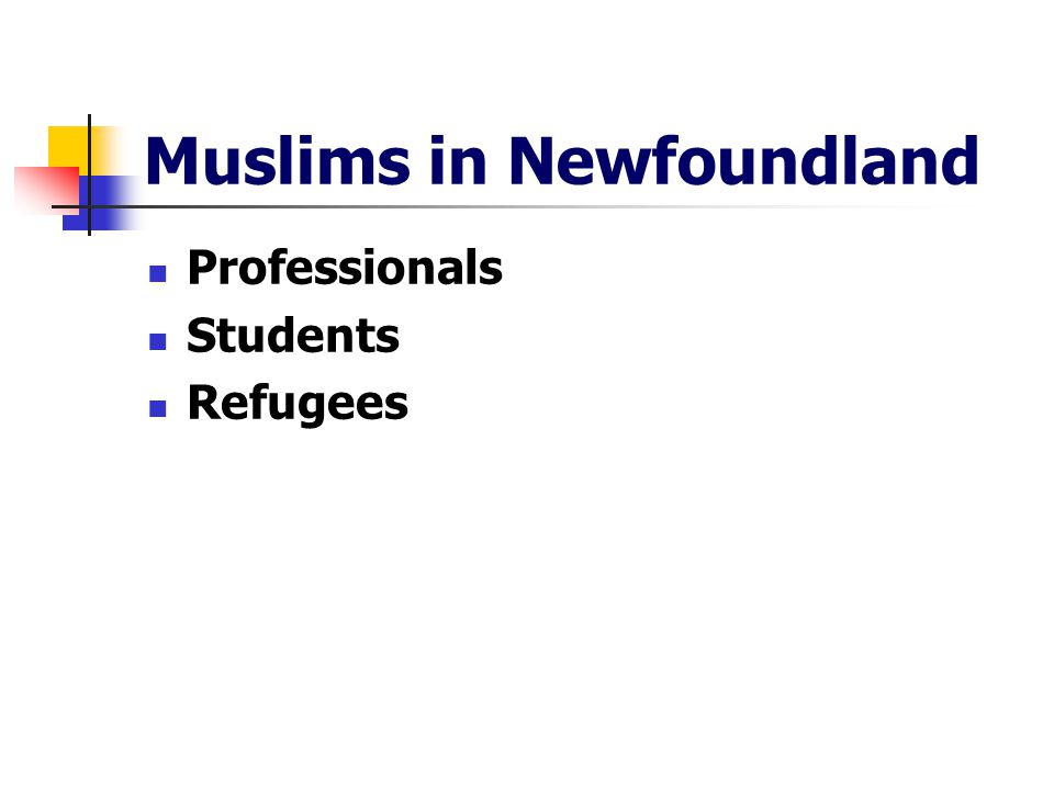 Muslims in Newfoundland Professionals Students Refugees