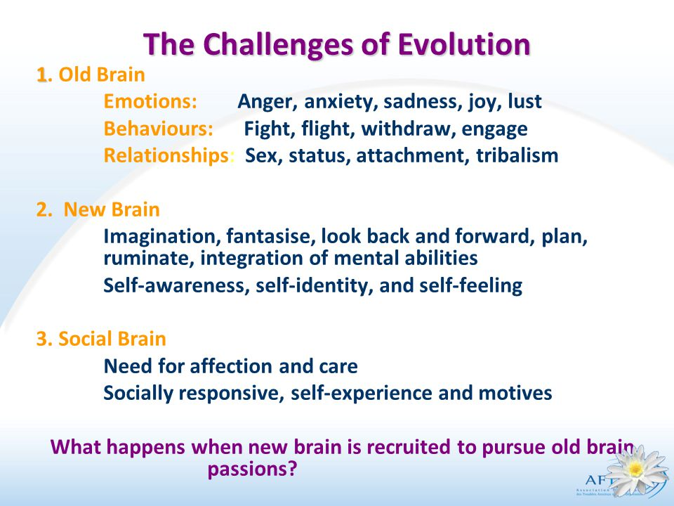 The Challenges of Evolution 1 1.