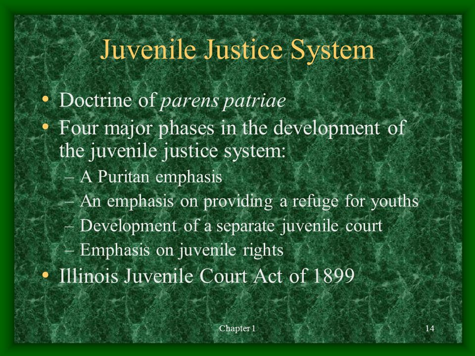 Chapter 114 Juvenile Justice System Doctrine of parens patriae Four major phases in the development of the juvenile justice system: –A Puritan emphasis –An emphasis on providing a refuge for youths –Development of a separate juvenile court –Emphasis on juvenile rights Illinois Juvenile Court Act of 1899