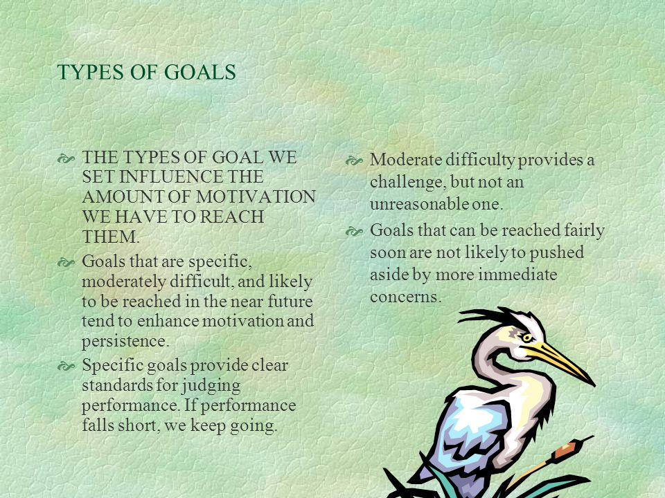 Why Goals Setting Improves performance  Goals direct our attention to the task at hand.  Goals mobilize effort.  Goals increase persistence.  Goal