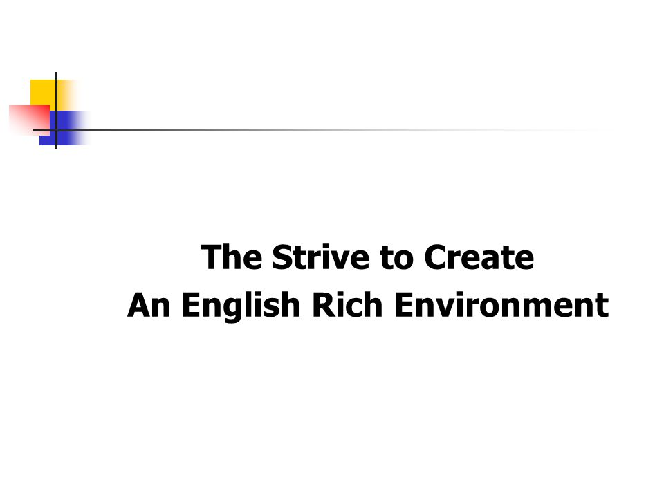 The Strive to Create An English Rich Environment
