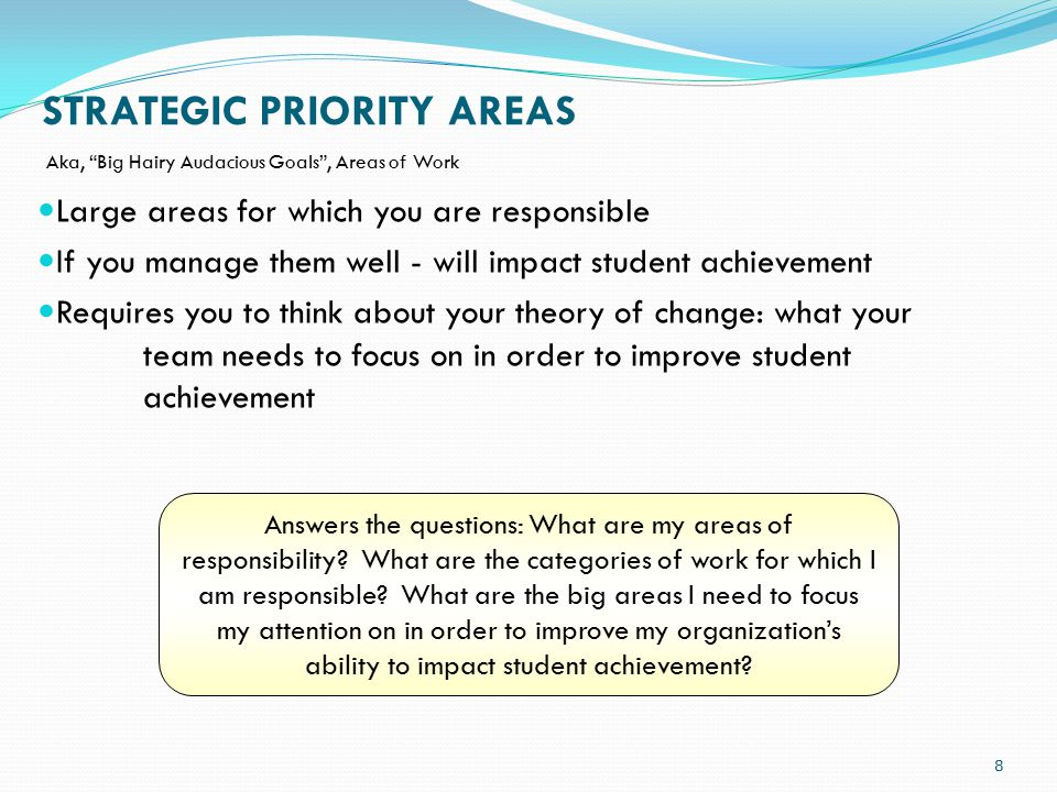 STRATEGIC PRIORITY AREAS Answers the questions: What are my areas of responsibility.