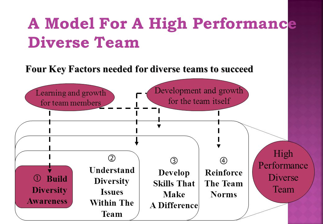 A Model For A High Performance Diverse Team Four Key Factors needed for diverse teams to succeed  Understand Diversity Issues Within The Team  Devel