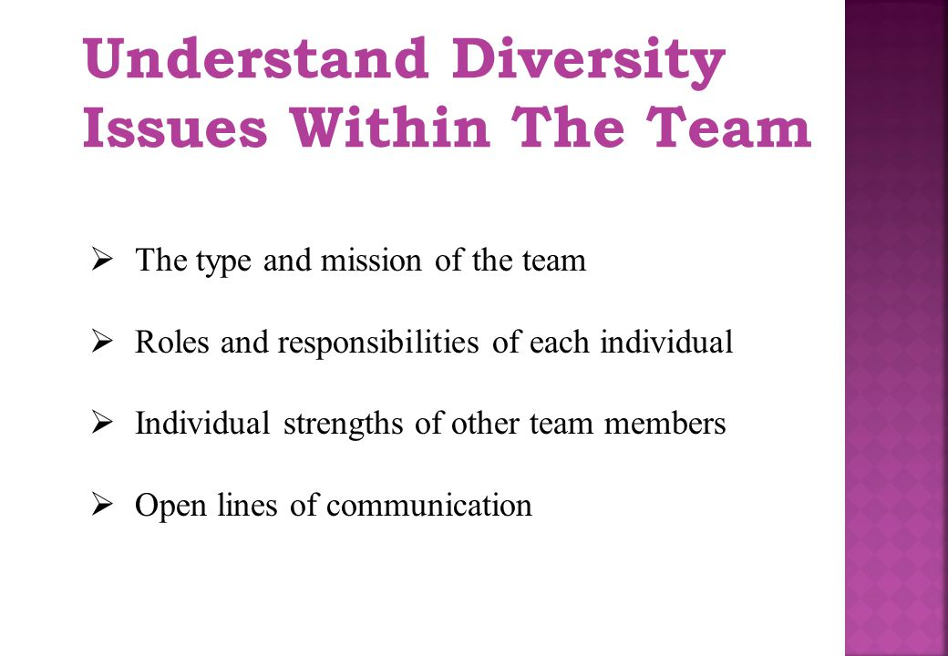 Understand Diversity Issues Within The Team  The type and mission of the team  Roles and responsibilities of each individual  Individual strengths