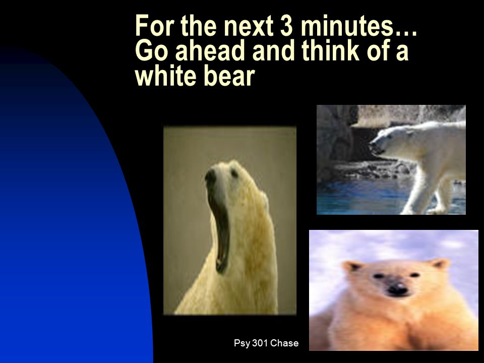 Psy 301 Chase27 For the next 3 minutes… Go ahead and think of a white bear