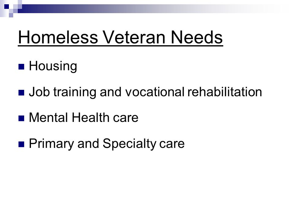 Homeless Veteran Needs Housing Job training and vocational rehabilitation Mental Health care Primary and Specialty care