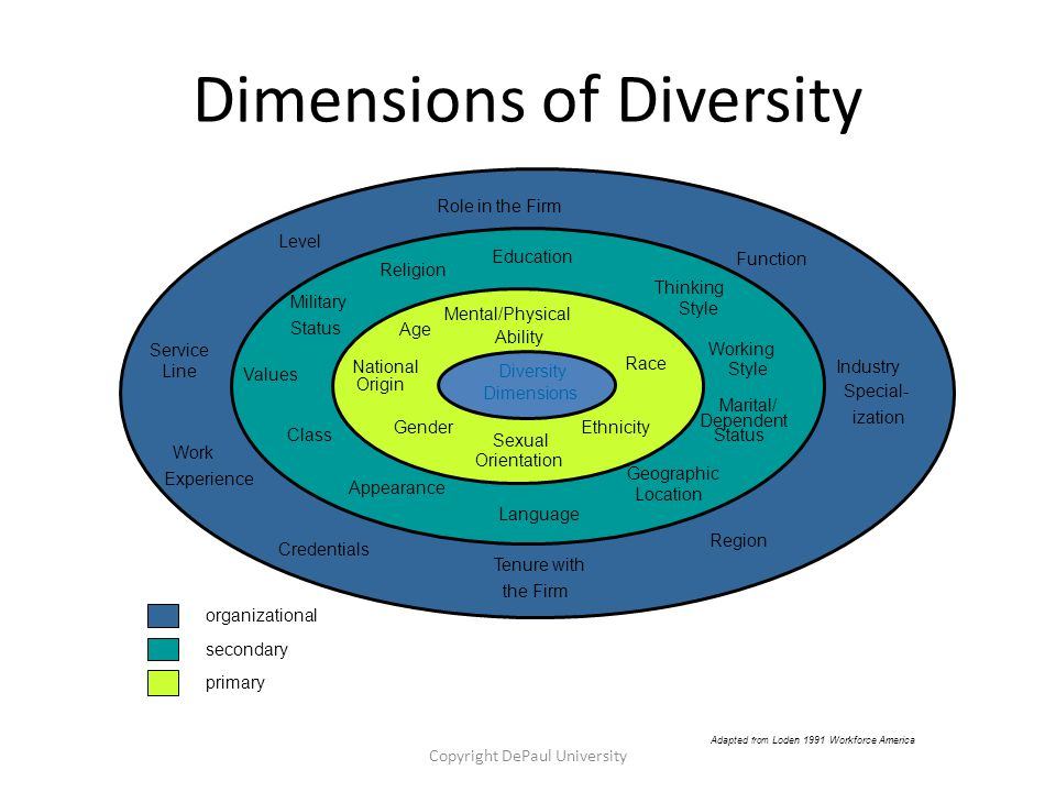Dimensions of Diversity Copyright DePaul University Language Appearance Education Thinking Style Working Style Marital/ Dependent Status Geographic Location Gender Mental/Physical Ability Race Ethnicity Sexual Orientation National Origin Age Level Function Region Credentials Work Experience Service Line Tenure with the Firm Industry Special- ization Role in the Firm primary secondary organizational Adapted from Loden 1991 Workforce America Military Status Values Religion Class Diversity Dimensions