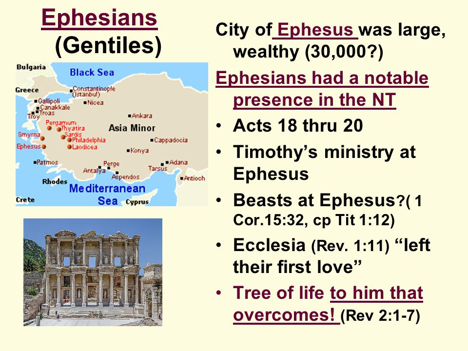 City of Ephesus was large, wealthy (30,000 ) Ephesians had a notable presence in the NT Acts 18 thru 20 Timothy's ministry at Ephesus Beasts at Ephesus ( 1 Cor.15:32, cp Tit 1:12) Ecclesia (Rev.