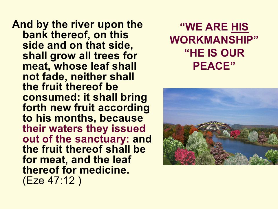 And by the river upon the bank thereof, on this side and on that side, shall grow all trees for meat, whose leaf shall not fade, neither shall the fruit thereof be consumed: it shall bring forth new fruit according to his months, because their waters they issued out of the sanctuary: and the fruit thereof shall be for meat, and the leaf thereof for medicine.