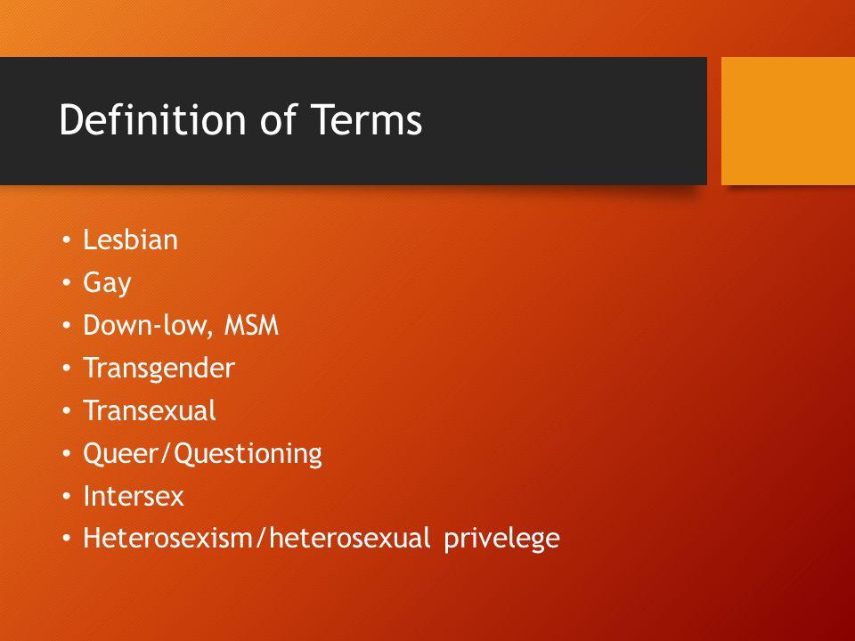Definition of Terms Lesbian Gay Down-low, MSM Transgender Transexual Queer/Questioning Intersex Heterosexism/heterosexual privelege