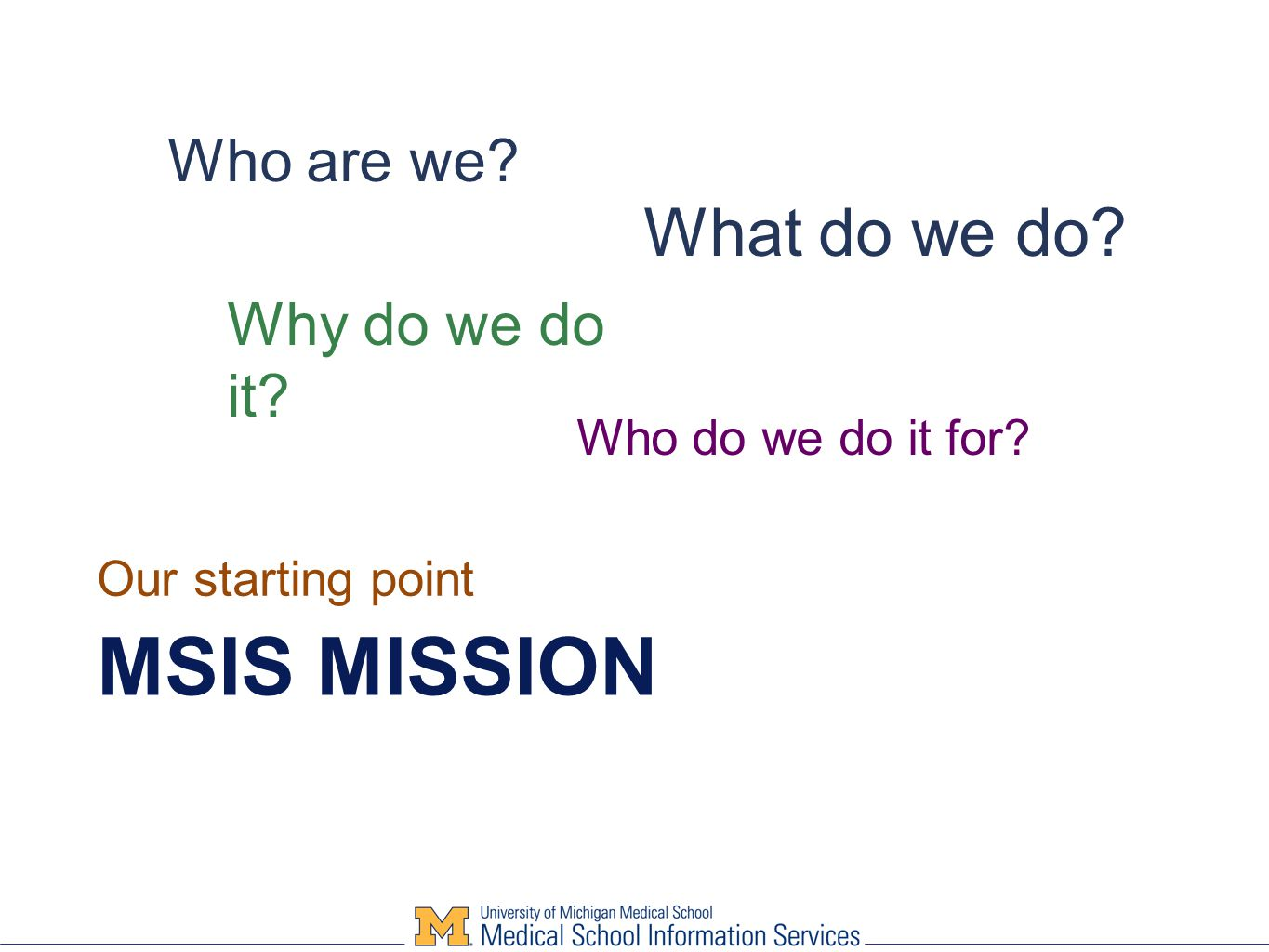MSIS MISSION Our starting point Why do we do it Who are we What do we do Who do we do it for