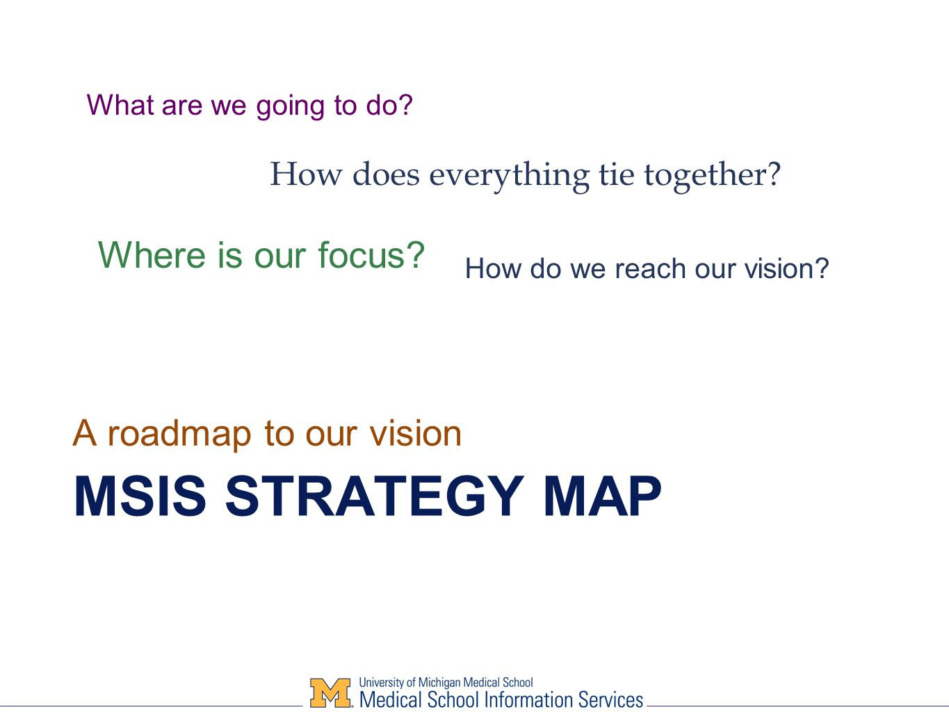 MSIS STRATEGY MAP A roadmap to our vision What are we going to do.