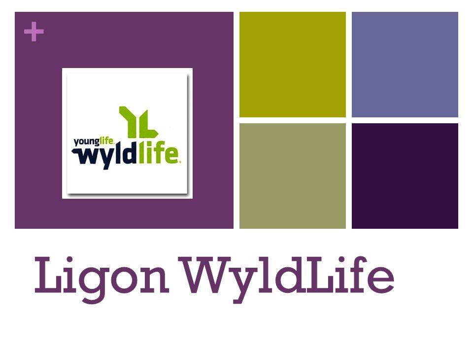 + Ligon WyldLife