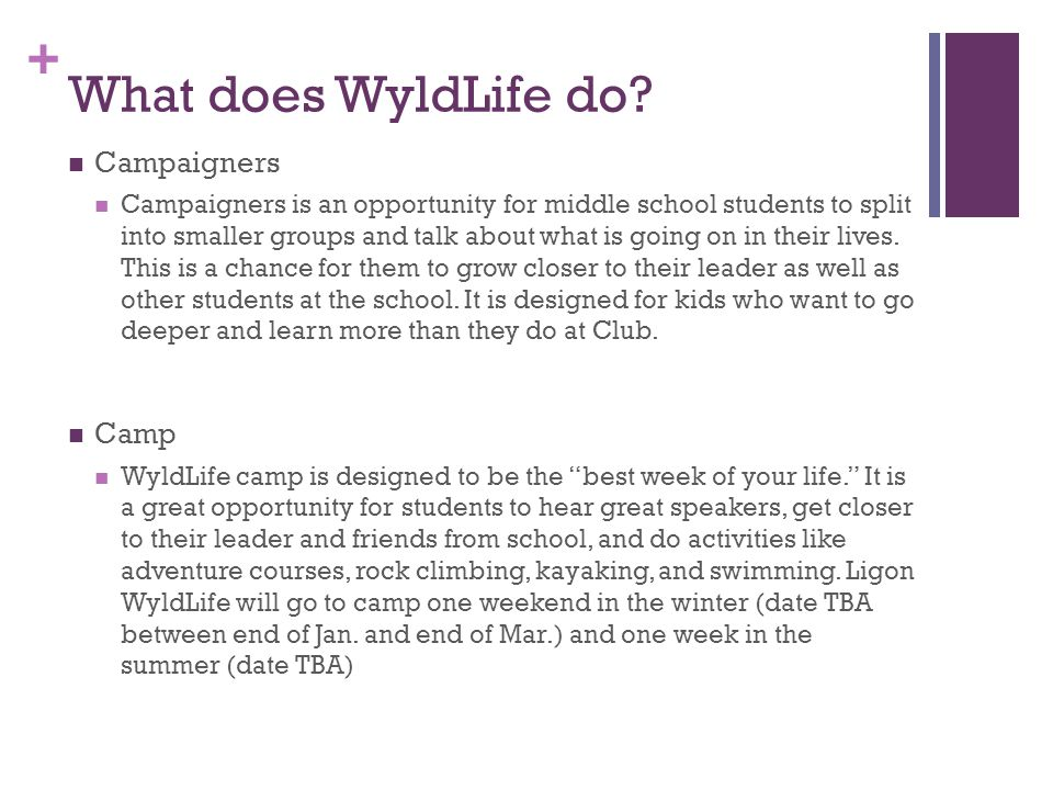 + What does WyldLife do.