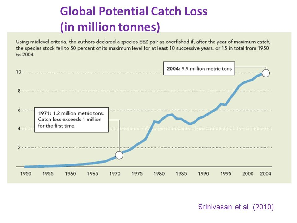 Global Potential Catch Loss (in million tonnes) Srinivasan et al. (2010)