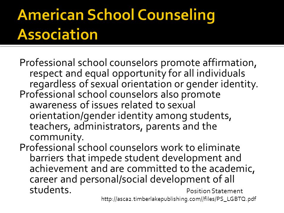 Professional school counselors promote affirmation, respect and equal opportunity for all individuals regardless of sexual orientation or gender identity.