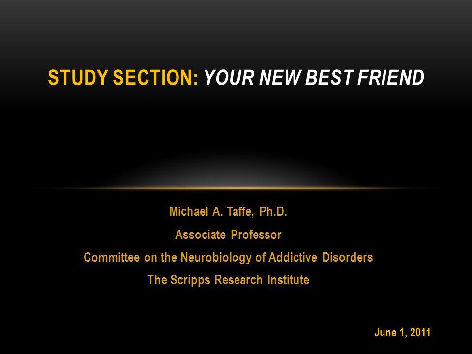Michael A. Taffe, Ph.D.