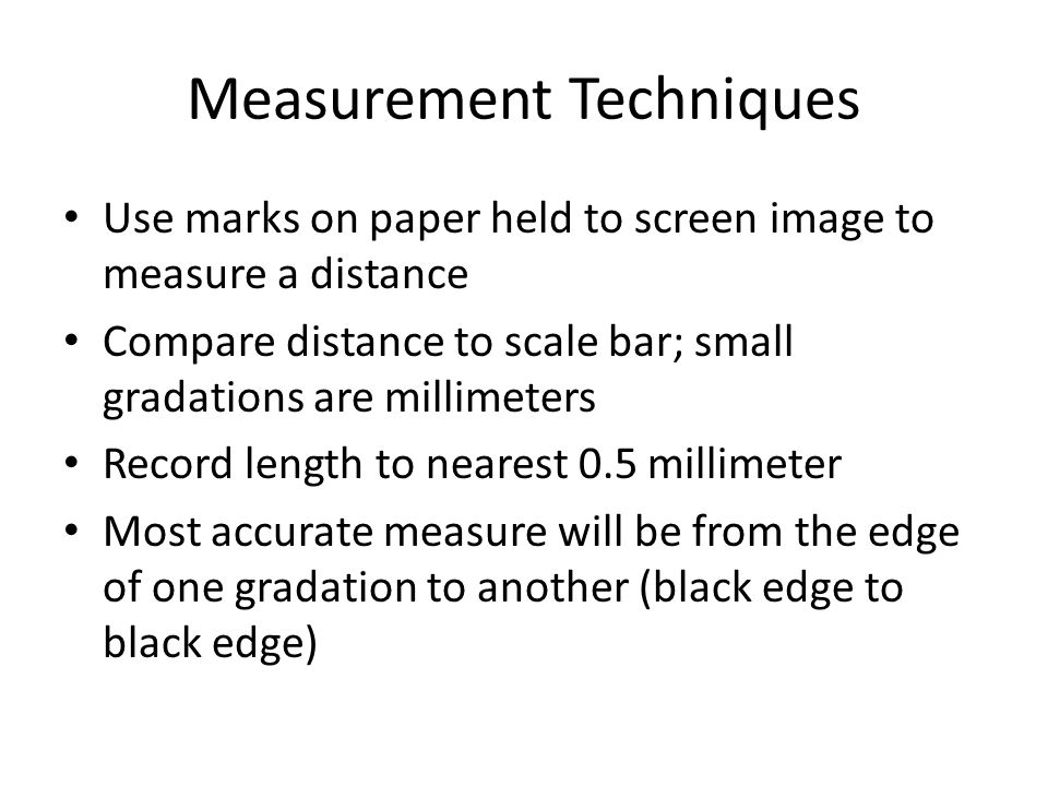 Measuring with pencil mark on paper held against image on computer screen