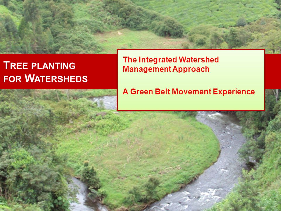 O VERALL O BJECTIVE To restore the degraded watersheds of key water catchments / forest ecosystems so as to improve their functions and improve the livelihood of the local communities