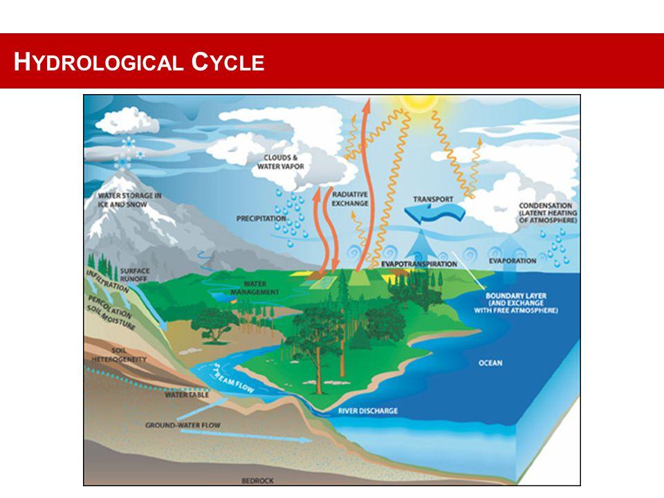 F OREST DESTRUCTION Source: UNEP