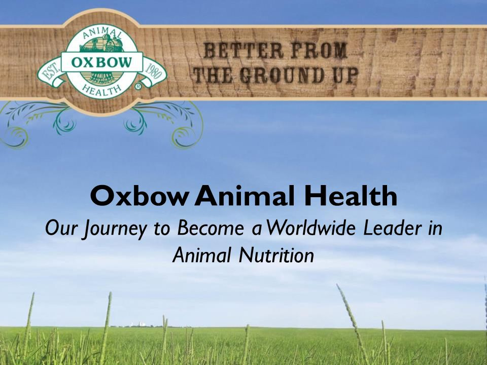 Oxbow Animal Health Our Journey to Become a Worldwide Leader in Animal Nutrition