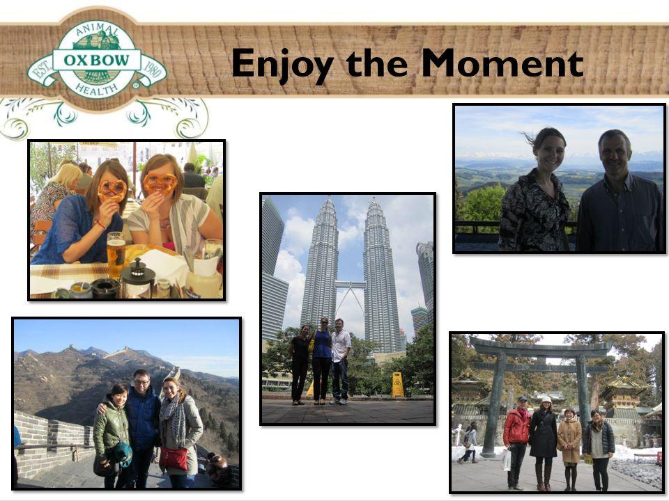 Enjoy the Moment ©2014 Oxbow Animal Health