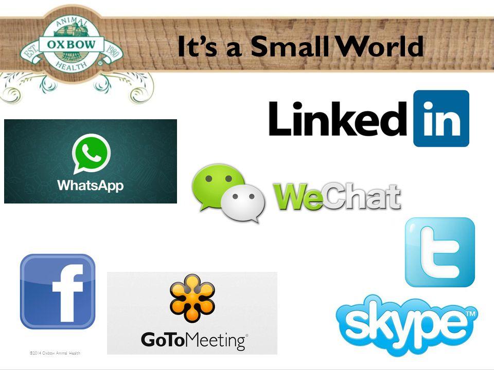It's a Small World ©2014 Oxbow Animal Health