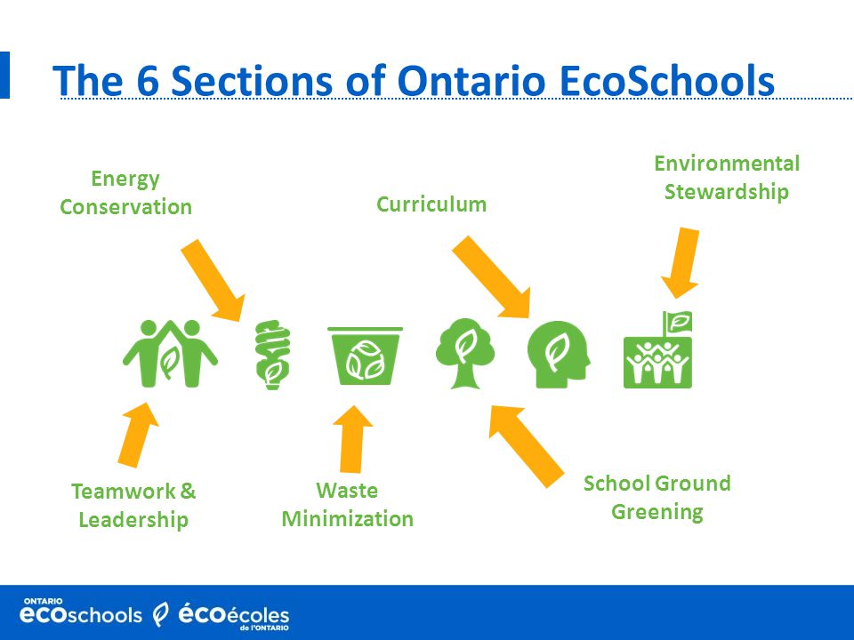 The 6 Sections of Ontario EcoSchools Curriculum School Ground Greening Waste Minimization Energy Conservation Teamwork & Leadership Environmental Stew