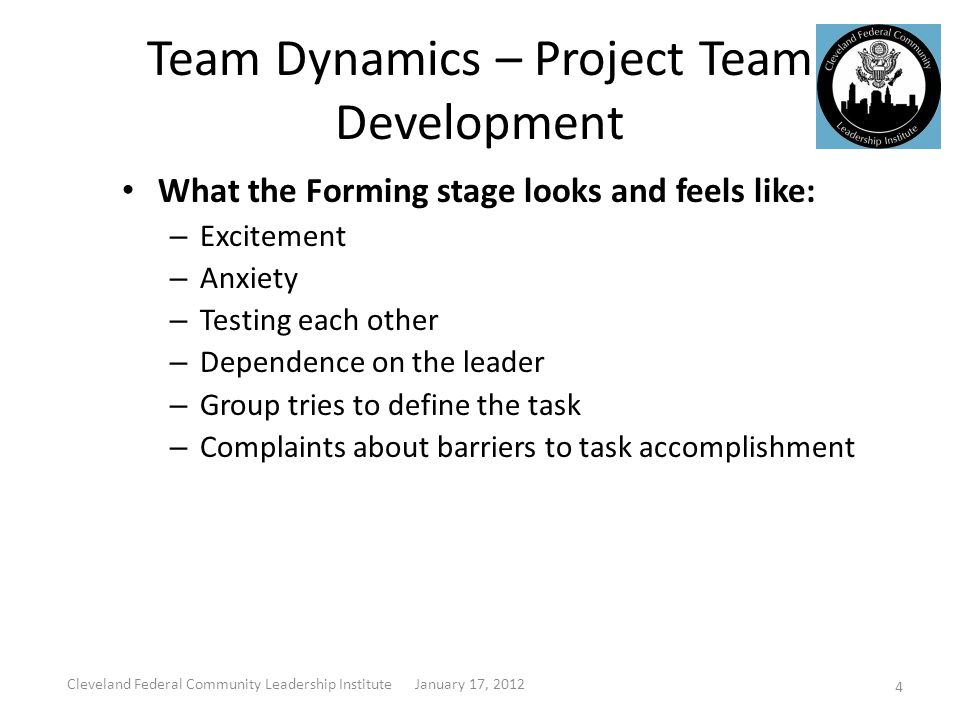 Team Dynamics – Project Team Development Storming: This stage in the group development is characterized by a focus on personal relationships within the group.