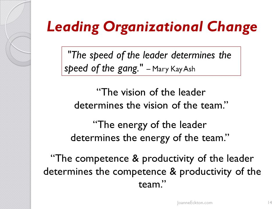 Leading Organizational Change JoanneEckton.com14 The speed of the leader determines the speed of the gang. – Mary Kay Ash The vision of the leader determines the vision of the team. The energy of the leader determines the energy of the team. The competence & productivity of the leader determines the competence & productivity of the team.