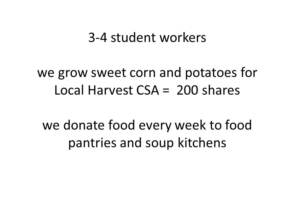 3-4 student workers we grow sweet corn and potatoes for Local Harvest CSA = 200 shares we donate food every week to food pantries and soup kitchens