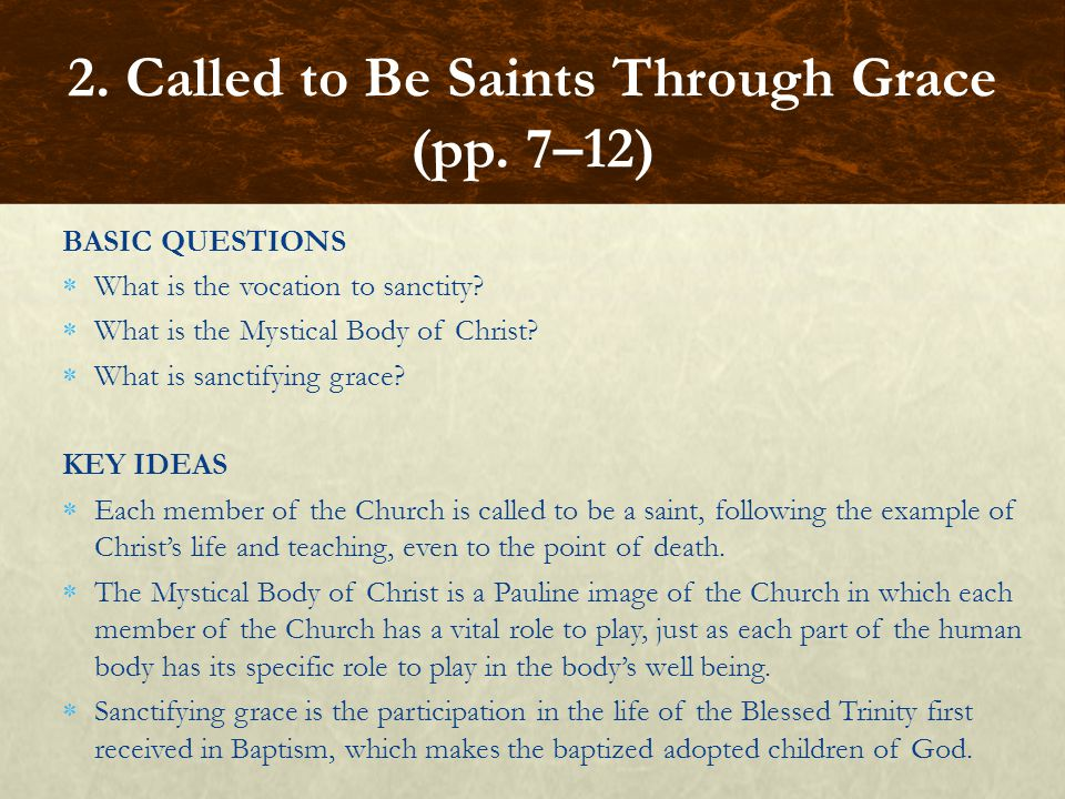 BASIC QUESTIONS  What is the vocation to sanctity?  What is the Mystical Body of Christ?  What is sanctifying grace? KEY IDEAS  Each member of the